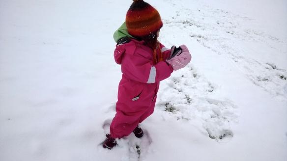 Tuli sitä nyt sen verran että lumipalloja sai!